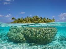 Tropisk ö över och undervattens- med korall arkivbild