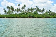 tropisk ö Arkivbild