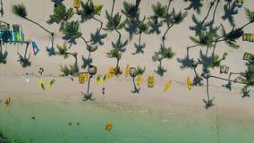 Tropisk östrand Punta Cana, Dominikanska republiken för flyg- sikt stock video