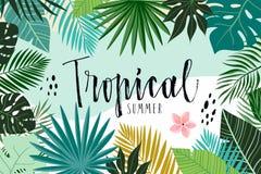 Tropisk abstrakt bakgrund med sidor arkivfoto