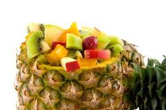 tropisk ananasfrukt Fotografering för Bildbyråer