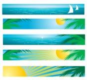 tropisk bakgrund vektor illustrationer