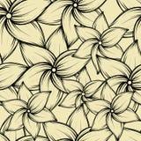 Tropisk bakgrund för enkel sömlös sommar med exotiska blommor, vektorillustration Arkivbilder