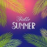 Tropisk bakgrund för Hello sommar Royaltyfria Bilder
