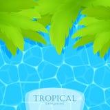 Tropisk bakgrund för sommar med vatten och palmblad stock illustrationer