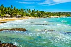 Tropisk bakgrund - hemlig strand Fotografering för Bildbyråer