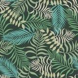 Tropisk bakgrund med färgrika palmblad Arkivfoton