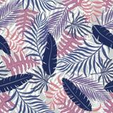 Tropisk bakgrund med färgrika palmblad Royaltyfria Foton
