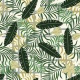 Tropisk bakgrund med färgrika palmblad geometrisk bakgrund Arkivfoton