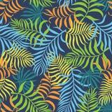 Tropisk bakgrund med färgrika palmblad Stranda av hår vänder mot in Fotografering för Bildbyråer