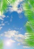 Tropisk bakgrund med linssignalljuseffekt Royaltyfria Bilder