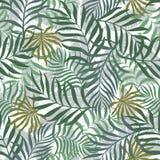 Tropisk bakgrund med palmblad Arkivfoton