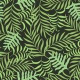Tropisk bakgrund med palmblad Arkivfoto