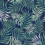 Tropisk bakgrund med palmblad Arkivbilder
