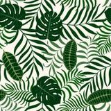 Tropisk bakgrund med palmblad Royaltyfri Bild