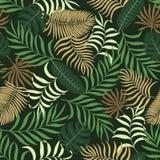 Tropisk bakgrund med palmblad Fotografering för Bildbyråer