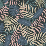 Tropisk bakgrund med palmblad Royaltyfria Bilder