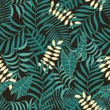 Tropisk bakgrund med palmblad Royaltyfri Foto