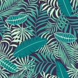 Tropisk bakgrund med palmblad Blom- modell för sömlös djungel Royaltyfria Foton
