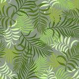 Tropisk bakgrund med palmblad blom- seamless Royaltyfria Bilder