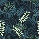 Tropisk bakgrund med palmblad blom- seamless Royaltyfri Fotografi