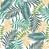 Tropisk bakgrund med palmblad blom- seamless Arkivfoto