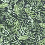 Tropisk bakgrund med palmblad seamless blom- modell Royaltyfria Bilder