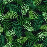 Tropisk bakgrund med palmblad seamless blom- modell S Royaltyfria Foton