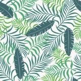 Tropisk bakgrund med palmblad seamless blom- modell S Arkivbilder