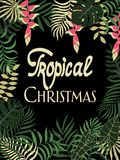Tropisk bakgrund med palmblad Skriftligt uttryck - tropisk jul Fotografering för Bildbyråer