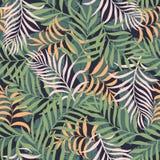 Tropisk bakgrund med palmblad Stranda av hår vänder mot in Arkivbilder