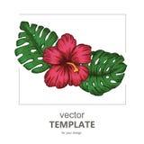 Tropisk bakgrund med tropiska sidor och blommor exotiskt vektor illustrationer