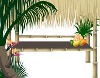 tropisk bakgrundsdeltagare Arkivfoton