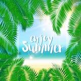 tropisk bakgrundssommar Palmblad och ram Royaltyfri Foto