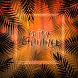tropisk bakgrundssommar Palmblad och ram Royaltyfria Bilder