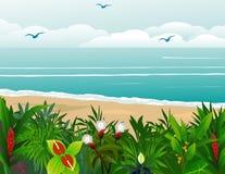 tropisk bakgrundsstrand Royaltyfri Fotografi