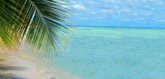 tropisk bakgrundsstrand arkivbild