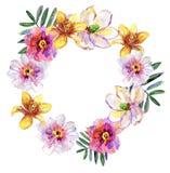Tropisk blom- kransbukett som dras i vattenfärgen som isoleras på vit stock illustrationer