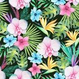 Tropisk blom- sömlös modell för vattenfärg royaltyfri illustrationer