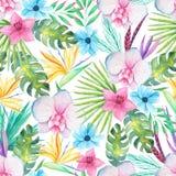 Tropisk blom- sömlös modell för vattenfärg vektor illustrationer