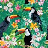 Tropisk blomma- och tukanfågeltappningbakgrund seamless sommar för modell royaltyfri illustrationer