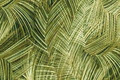 Tropisk blomma-, växt- och bladmodell Arkivfoton