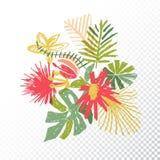 Tropisk blommabukett, genomskinlig bakgrund Royaltyfri Illustrationer