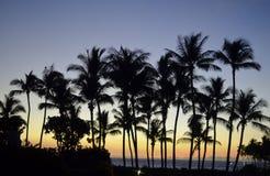 tropisk briljant solnedgång Royaltyfria Foton