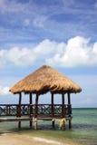 tropisk brygga Arkivfoto