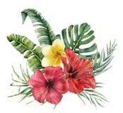 Tropisk bukett för vattenfärg med ljusa blommor Räcka den målade kokosnöten, banansidor, monsteraen, plumeria, hibiskus royaltyfri illustrationer