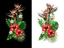 Tropisk bukett med heliconia, strelicia- och hibiskusblommor och tropiska sidor stock illustrationer