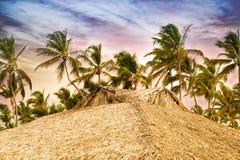 Tropisk bungalow och palmträd bredvid den fantastiska blåa lagun arkivfoton