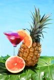tropisk coctail Royaltyfri Bild