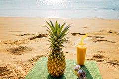 tropisk coctailananas Fotografering för Bildbyråer